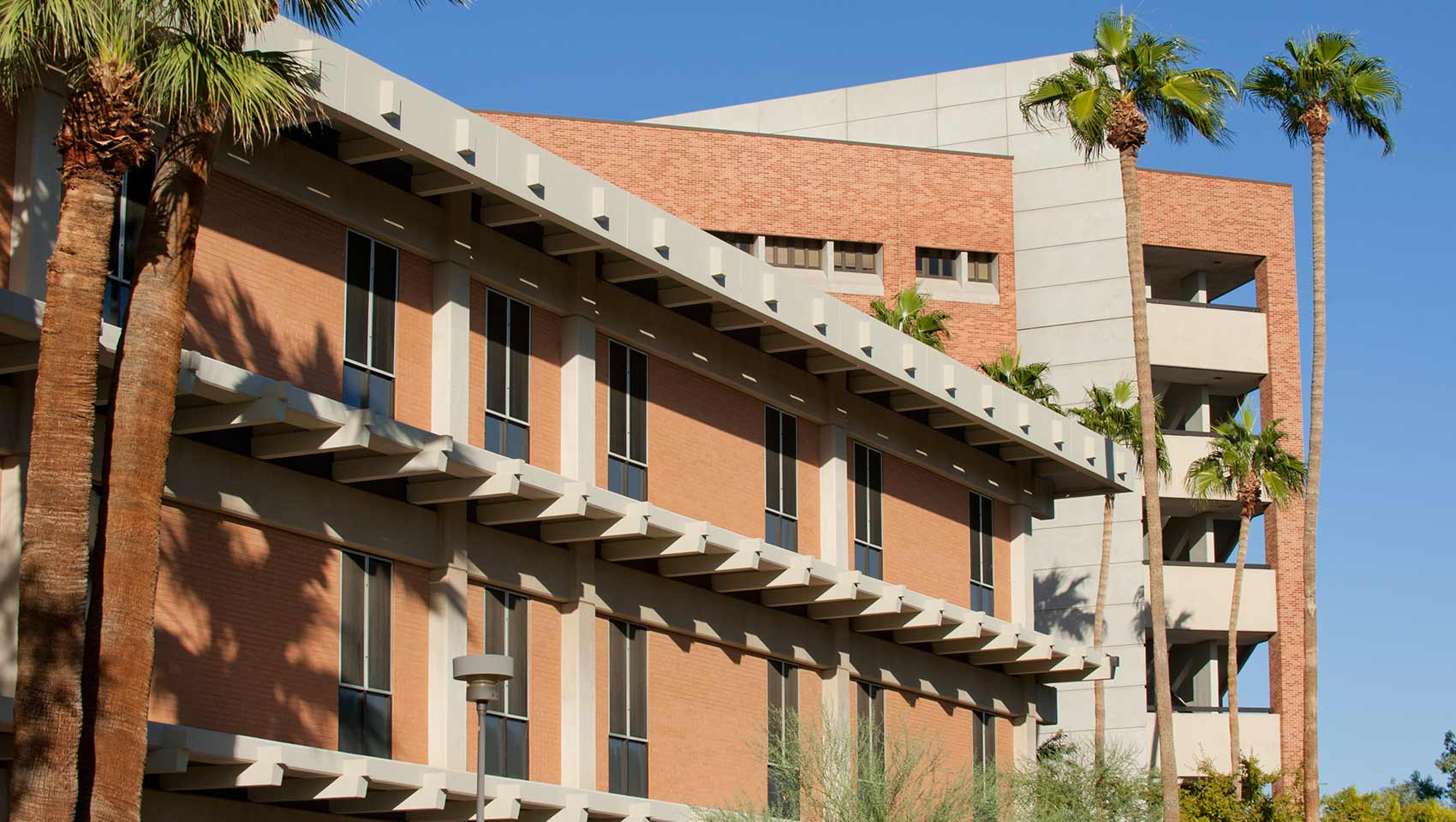 arizona state university phoenix hotels kimpton palomar